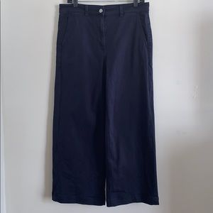 Everlane straight leg cropped pants US12 navy